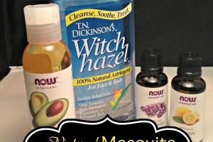 Natural Mosquito Repellent Spray Recipe