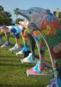 Clearwater's Dolphins