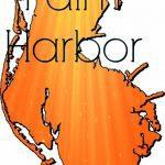Spotlight on Palm Harbor