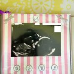 Baby's First Scrapbook