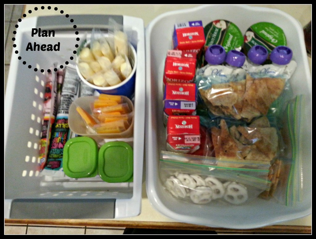 5 Lunch Ideas For The Picky Toddler