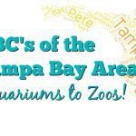 ABC's of the Tampa Bay Area: Explore our City from Aquariums to Zoos (and everything in between!)
