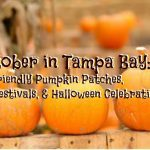 October in Tampa Bay: Kid Friendly Pumpkin Patches, Fall Festivals, Halloween Celebrations, & More!