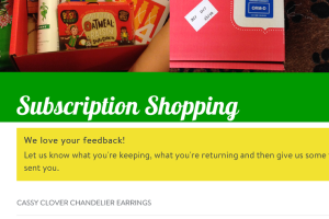 Subscription Shopping Review