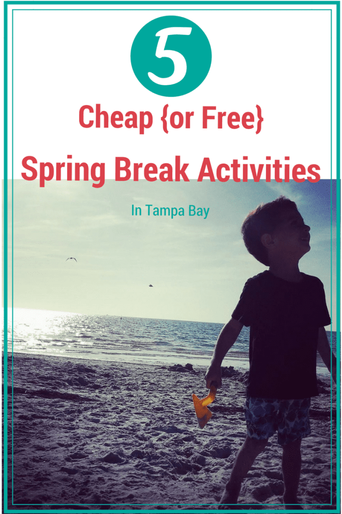 5 Cheap Spring Break Activities in Tampa Bay
