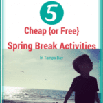5 Cheap {or FREE} Spring Break Activities in Tampa Bay