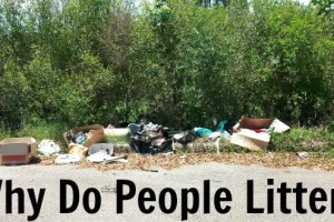 Why Do People Litter?
