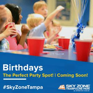 Sky Zone Tampa Bay Moms Blog