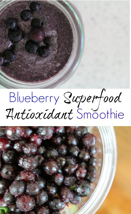 Blueberry Smoothie on Having Fun Saving and Cooking