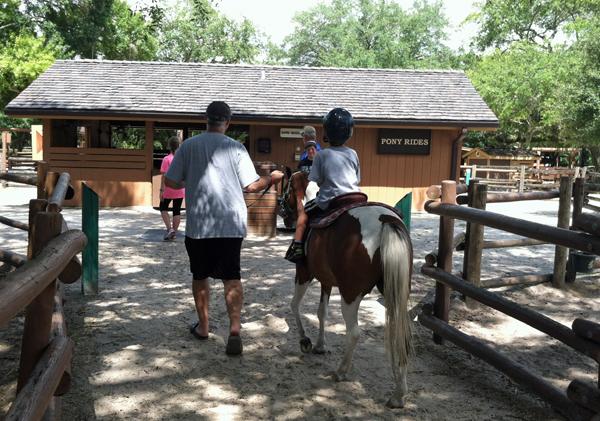 Pony ride at Disney's Fort Wilderness Resort & Campground