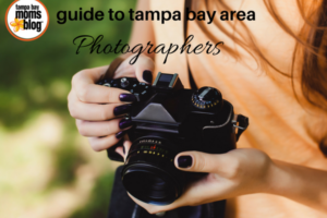guide to tampa bay area