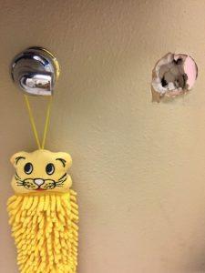 Bathroom renovation needed