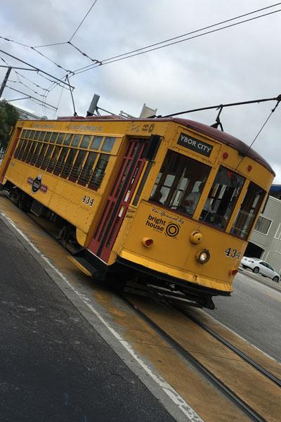 The TECO Line Streetcar System