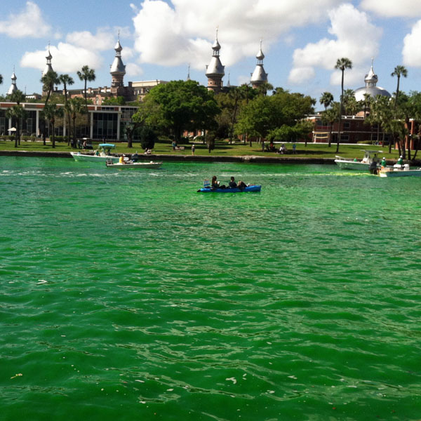 The HIllsborough River goes green for Paddy's Day