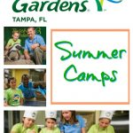 Busch Gardens Summer Camps – Why My Family Loves Them