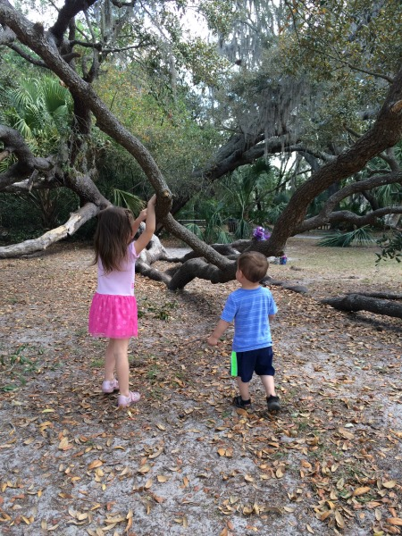 kids, outdoors, outdoor play