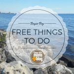Free Things to do Around Tampa Bay
