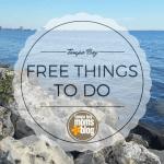 Free Things to do Around Tampa Bay