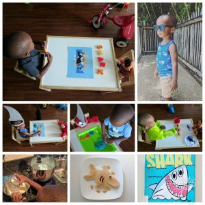 shark week projects