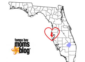 The County Life: Residing In Pinellas' Unincorporated Zone