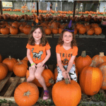 The Perfect Pumpkin Patch Experience