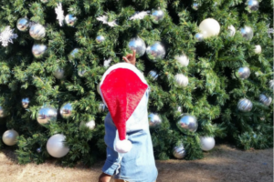 A Guide to Photos with Santa Claus in the Tampa Bay Area