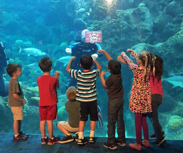 Diver at a Florida Aquarium birthday party