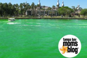 St. Patrick's Day in Tampa