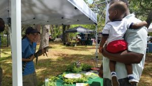 Earth Day event in Tampa