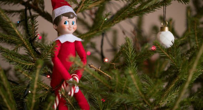 elf on a shelf in a christmas tree
