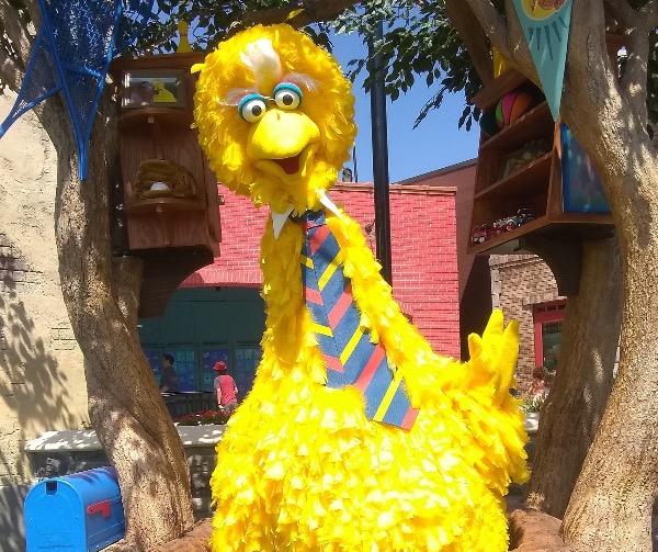 Big Bird from Sesame Street