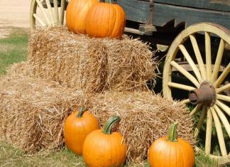 pumpkins on hay next to wagon