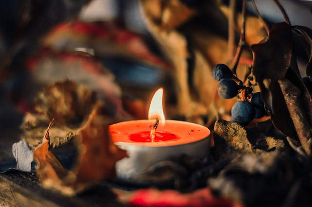 candle surrounded by leaves