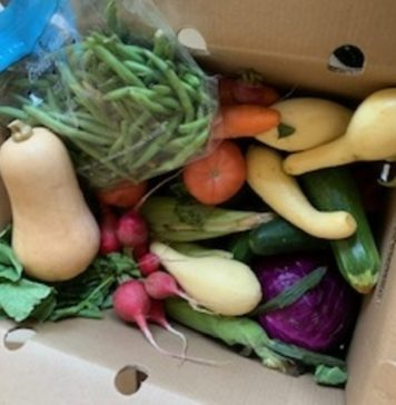 Box of Vegetables From Pennrose Farms
