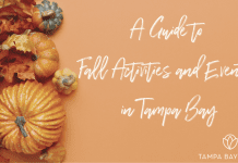 A Guide to Fall Activities & Events In Tampa